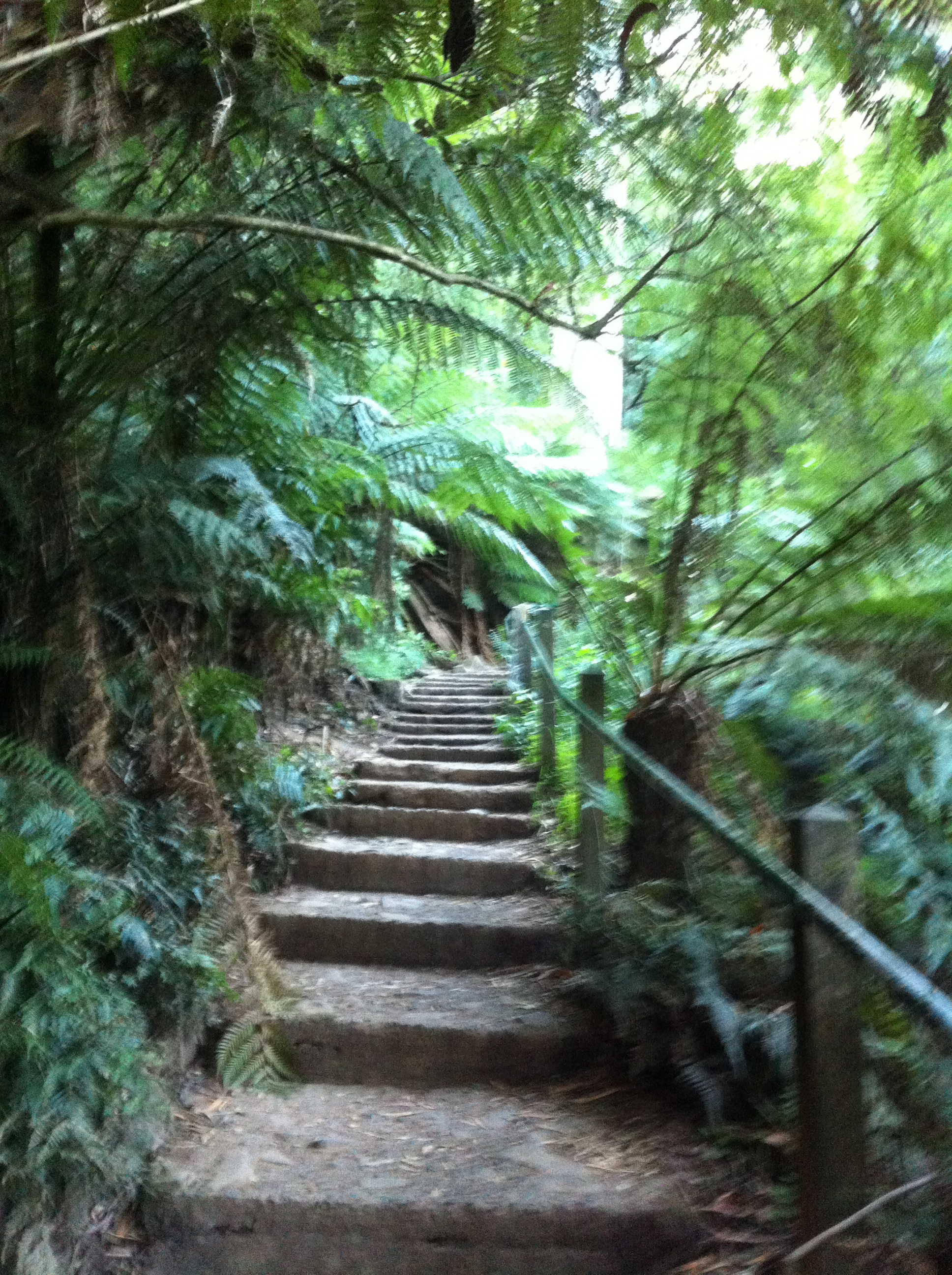 Steps To Apply Makeup For Beginners: 1,000 Steps Kokoda Track Memorial Walk