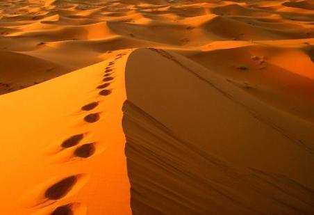 morocco-sahara-desert